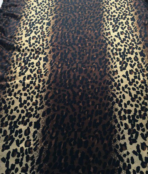 cheetah_resize