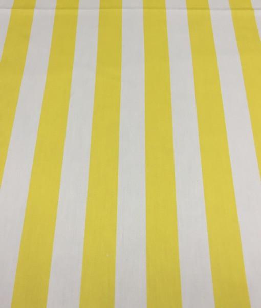 Yellow stripe_resize