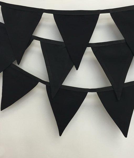 black-bunting_resize